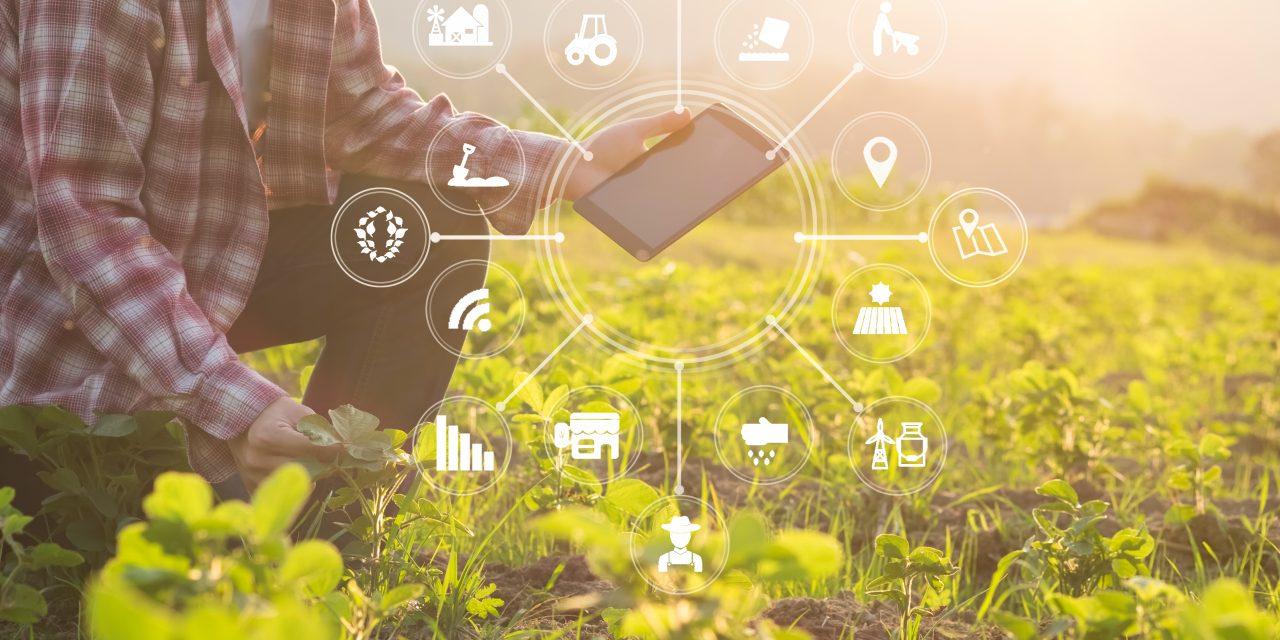 http://kavosh.group/wp-content/uploads/2020/11/Smart-farming-1280x640.jpg